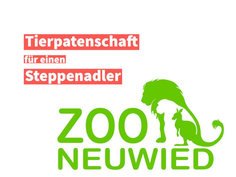 Tierpatenschaft für einen Steppenadler im Zoo Neuwied